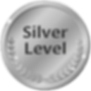 Silver Level.png