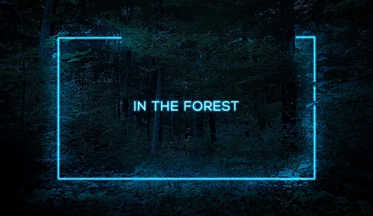 thumbnail swiss forest.jpg