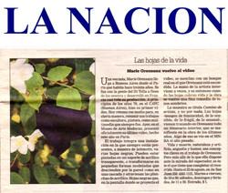 Clarin Revista