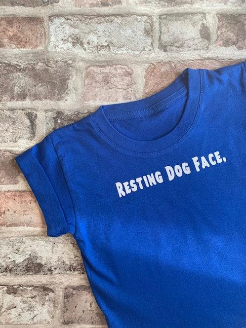 Resting dog face