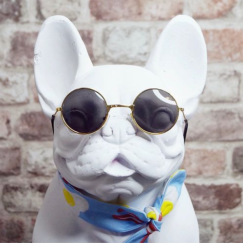 Pooch Sunglasses - black lens