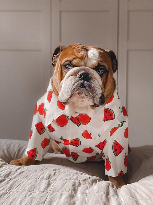 'Tutti Frutti' Dog Shirt