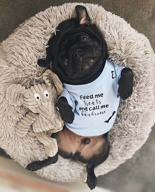 Call me handsome - Dog Tee