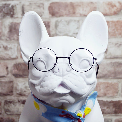 Pooch Sunglasses  - clear lens