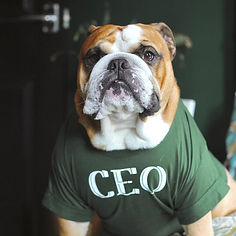 beefy%20ceo_edited.jpg