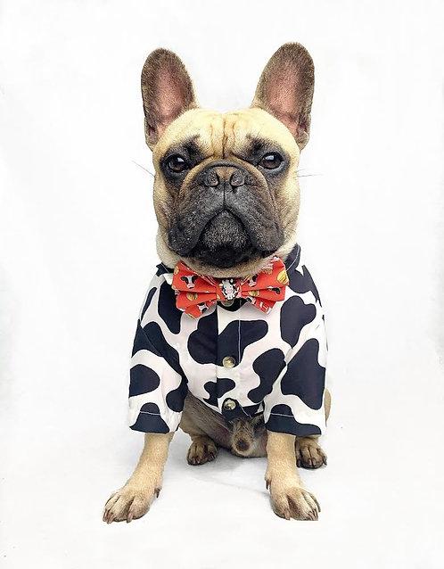 'Holy Cow' Dog Shirt