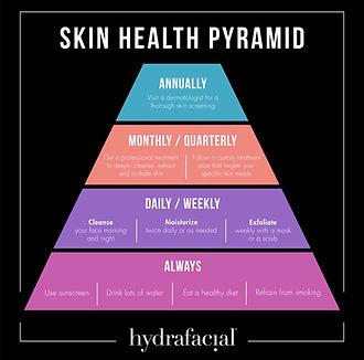 skin pyamid.JPG