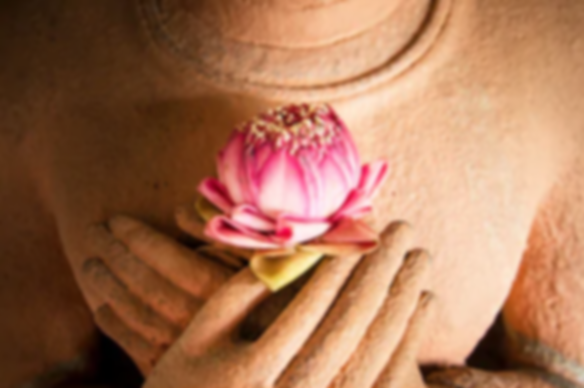 Lotus Buddah.png