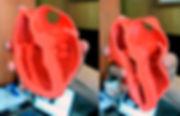 Impresin 3D de corazon flexible filaflex
