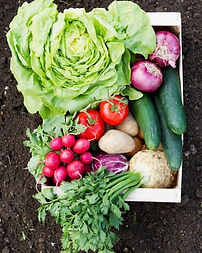 How To Grow A Complete Salad Garden.jpg