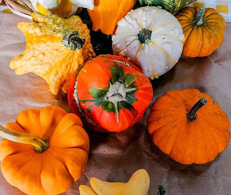 Abóbora Decorativa de Halloween  (Unid)