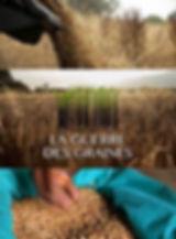 6-la guerre des graines.jpg