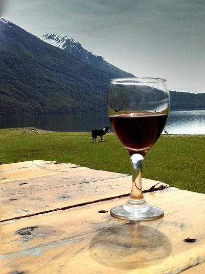 Taça de vinho com amigos na beira do Lago Gutierrez.