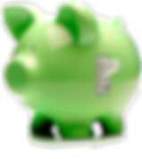 ACE FUSION PIG