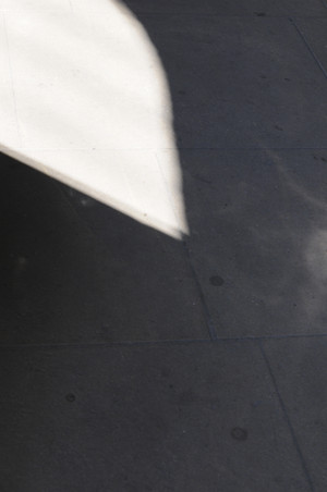 Shadow | Pavement