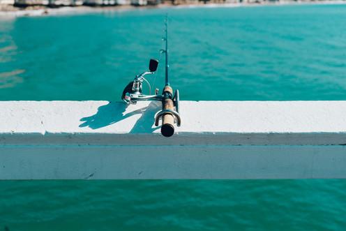 bufishing.jpg