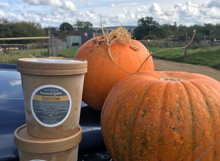 Pumpkin Sorbet - not from us but from an expert!