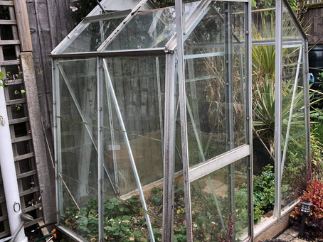 Everyone needs a greenhouse....