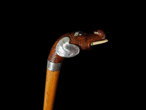 An Elephant Head Walking Cane (Robert Pringle) C. 1902  Item: 144
