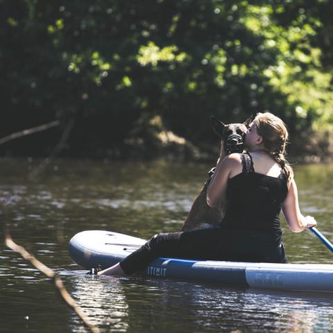 Cani-Paddle-Manche
