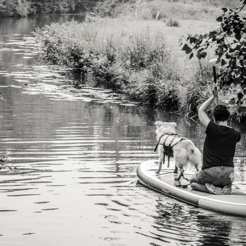 Cani-Paddle CAEN