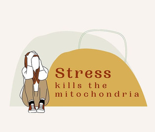 Stress and the mitochondria