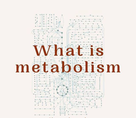 What is the metabolism?