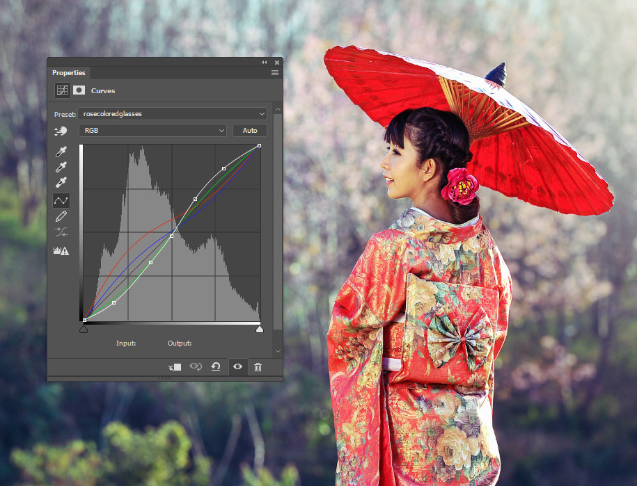 Create a distinct mood to your photos using curves presets.