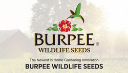 Burpee Wildlife Seeds Presentation
