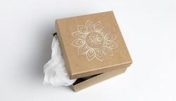 Lotus Rhythms Packaging Concept