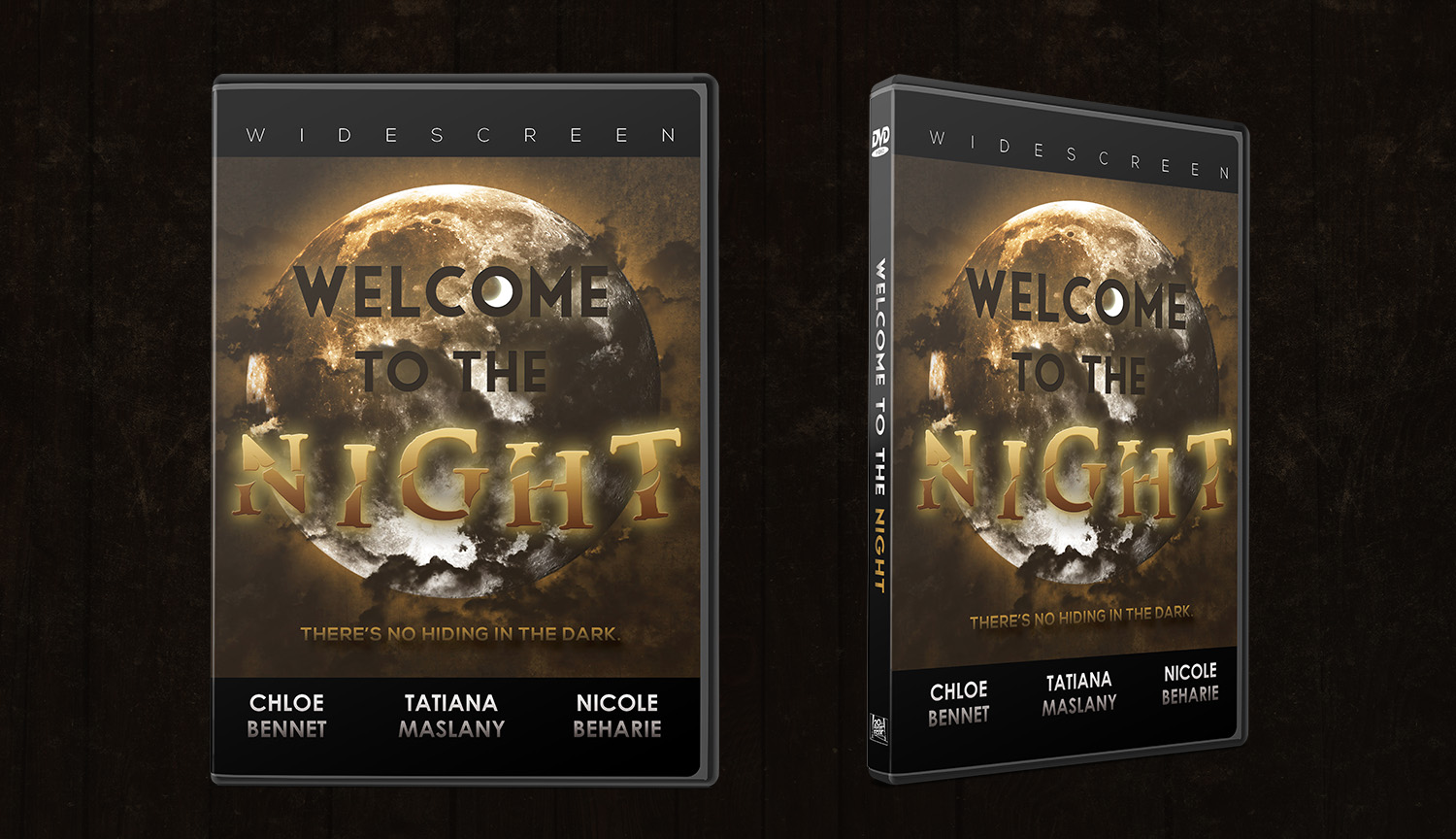 """Welcome to the Night"" DVD Cover"