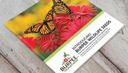 Saddle-Stitch Brochure Cover