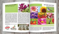 Brochure Interior, Two Page Spread