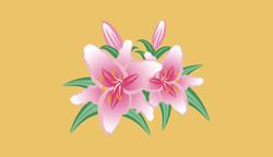 Pink Stargazer Lillies