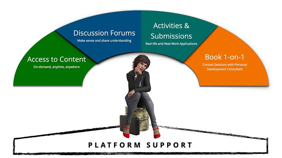 Optimiser programs - platform support.00