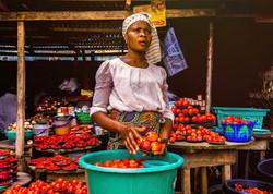 Sustainable livelihoods