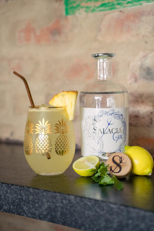 Salacia Gin Mosadi
