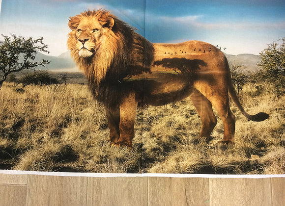 Majestic Lion   by Hoffman