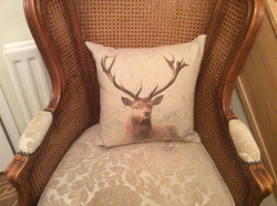 Stag cushion from Kit