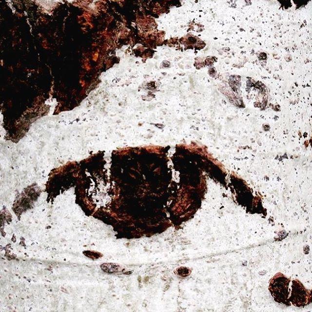 Eye of Aspen