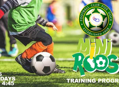 Tuesdays Miniroo age 4 to 6 Training Program