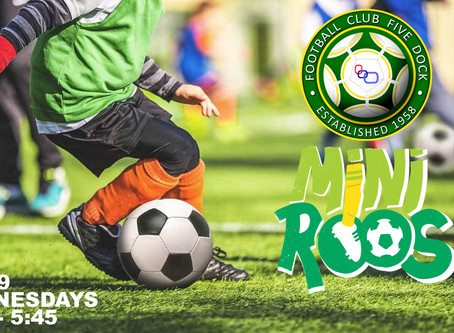 Wednesdays 7 to 9 Age Group