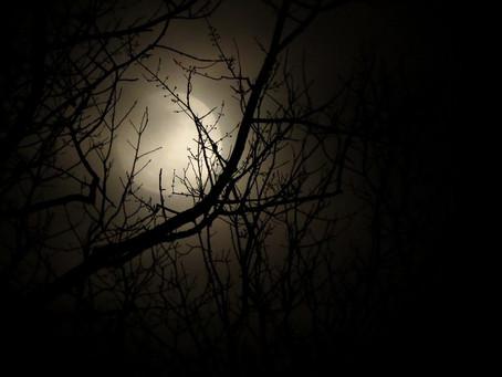 As noites