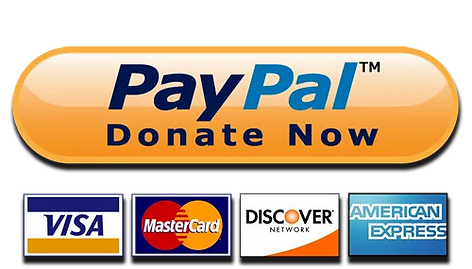 PayPal-Donate-Button-High-Quality-PNG.we