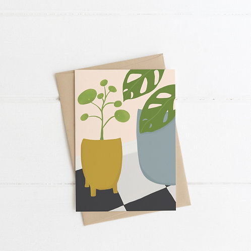 Chinese Money Plant Greeting Card Pack