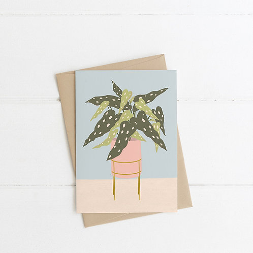 Spotted Begonia Greeting Card Pack