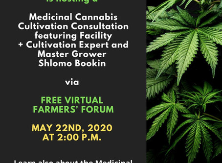 Medicinal Cannabis Cultivation Consultation