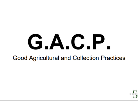Good Agricultural and Collection Practices