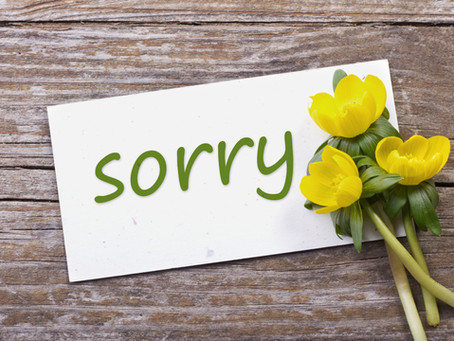 Apologies in interest-based negotiation - is there another option?