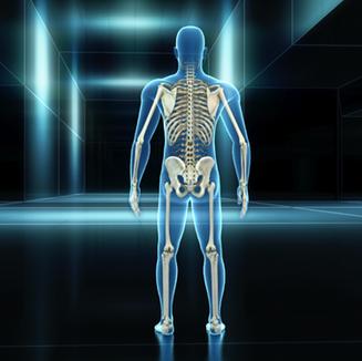 skeleton blueman